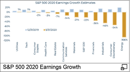 S&P 500 2020 Earning Growth